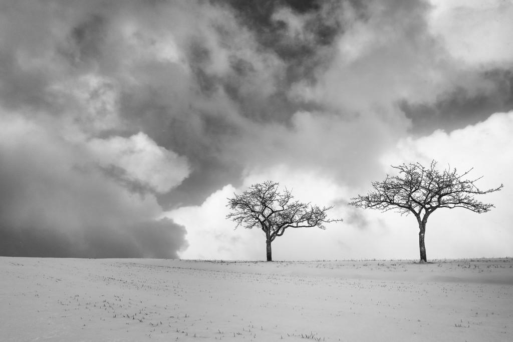 003-1090 - Nikon D810 24mm - Winter 17.1.16