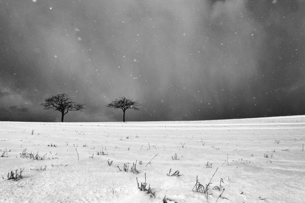 005-1090 - Nikon D810 24mm - Winter 17.1.16