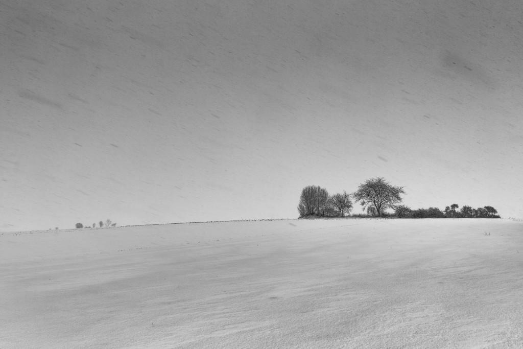 012-1090 - Nikon D810 24mm - Winter 17.1.16