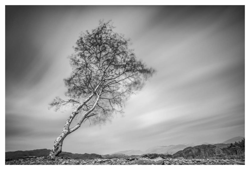 Aspect2i.co.uk Black & White Masterclass & 1:1 with Paul Gallagher