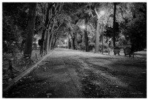 005-1103 - Bukarest 4.8.2016 Leica M240 35mm