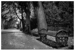009-1103 - Bukarest 4.8.2016 Leica M240 35mm