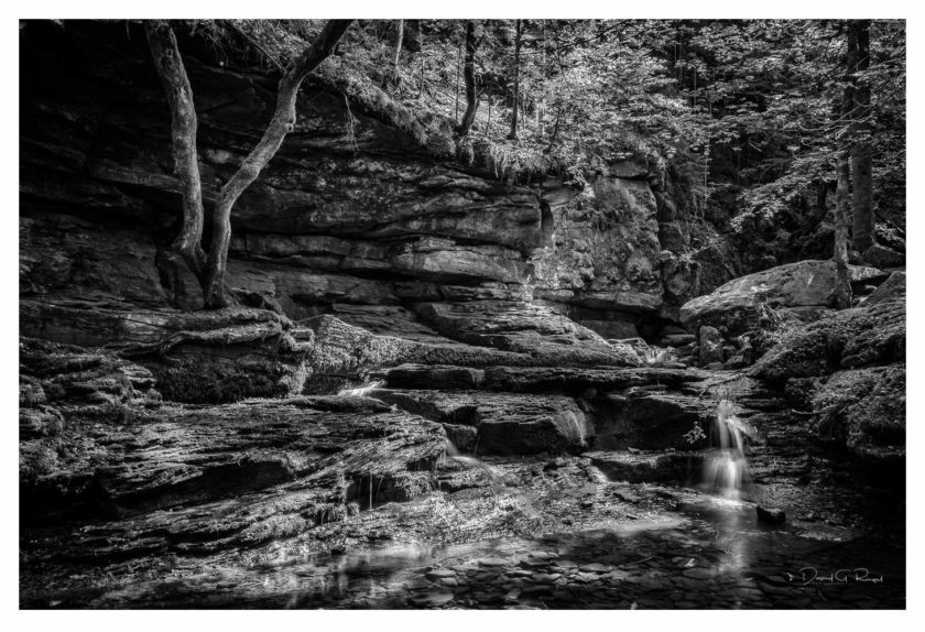 Monbachtal – Black Forest