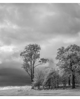 Yorkshire Dales in B&W