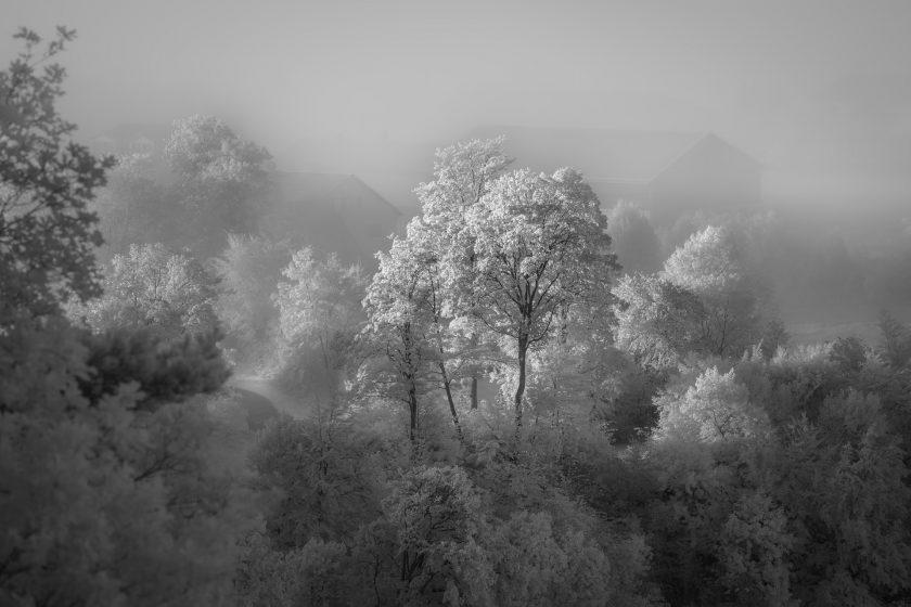 First fog Sept 2021 & castle Lichtenstein (infrared)